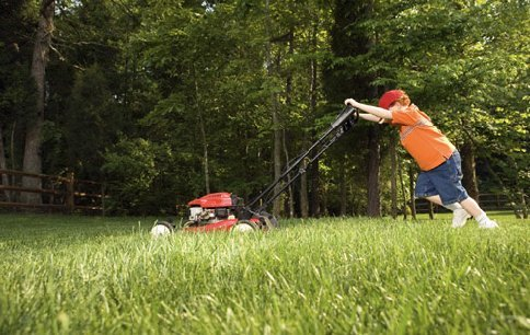 How To Train A Robot To Mow Your Lawn Yes Really